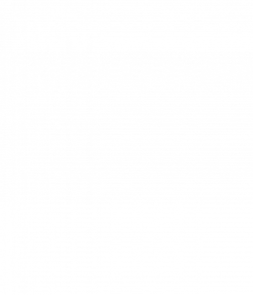 Blettahreinsir 500ml